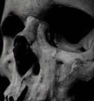 Next stop: Grave Wisdom~